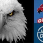 JustDrive zobaczył orła cień, czyli tajemnicze kłopoty aplikacji do wygodnego płacenia za paliwo