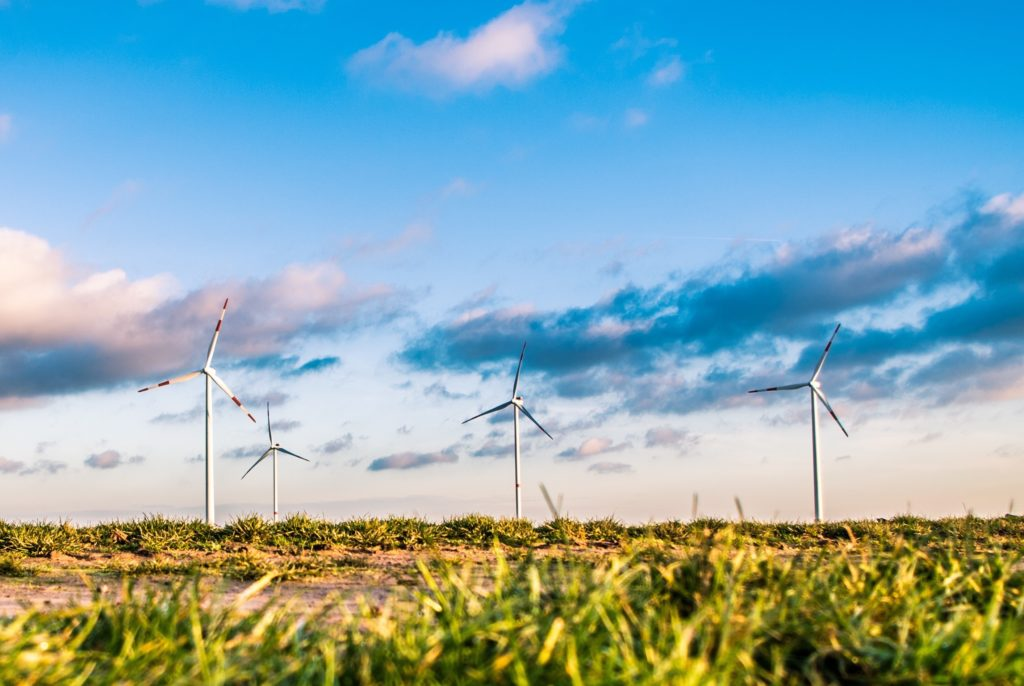 Oferty sprzedaży prądu z Odnawialnych Źródeł Energii. Gdzie ich szukać i czy prąd z wiatraka będzie tańszy niż ten z węgla?