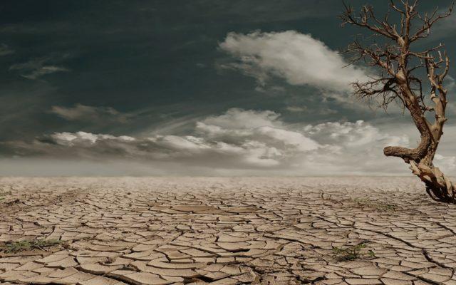A jeśli przez zmiany klimatu czeka nas wielka susza? Są już fundusze, które obiecują zyski z inwestycji w… wodę. Prześwietlamy!