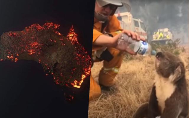 Oni przewidzieli wielkie pożary w Australii. Co zapowiadają dla Polski? Jak megapożar na drugim końcu świata wpłynie na nasze życie?