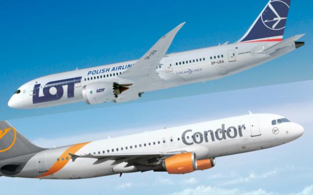 LOT chciałby przejąć niemieckie linie Condor. Czy dzięki temu wszedłby do lotniczej elity? I co by to oznaczało dla polskich pasażerów?