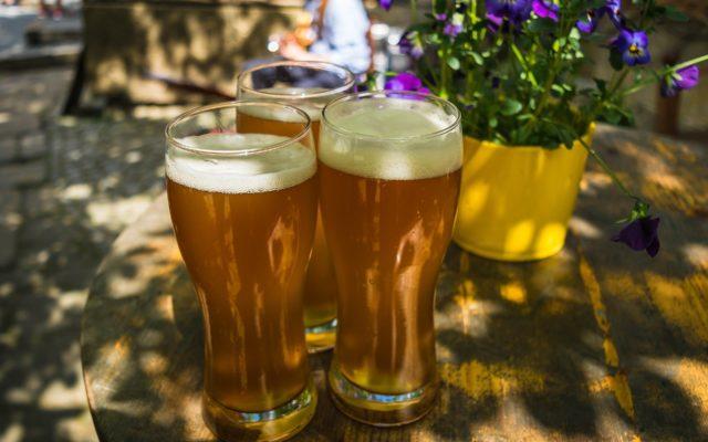 Majówka, piwo i koronawirus. Imprezy i koncerty odwołane, puby i hotele zamknięte, grill rodzinny w wersji demo. Ile piwa w tym roku nie wypijemy?