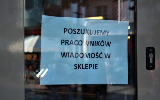 Szukasz pracy w czasie pandemii? Czy wykształcenie, doświadczenie i znajomość języków obcych jest dziś w cenie? Oni sprawdzili, kogo szukają pracodawcy