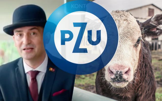 """Alior Bank ogłosił potężne straty. Co na to PZU, jego główny udziałowiec, który zainwestował w """"wyższą kulturę bankowości"""" 2,3 mld zł? Jaki jest bilans tej inwestycji?"""