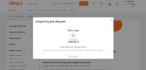 Czesc Uzytkownikow Allegro Moze Juz Uzywac Allegro Pay Warto Testuje