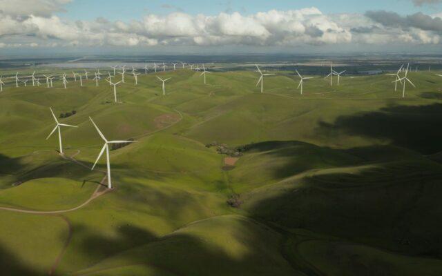 Fotowoltaika lub wiatraki nie dla ciebie? Zielona energia może i tak zasilać twój dom lub mieszkanie. Ile kosztuje prąd z certyfikatem ekologicznego pochodzenia?