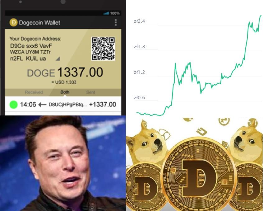 """Dogecoin oszalał: to najdroższy żart w historii, zwiastun katastrofy, czy… zapowiedź nowego """"stylu"""" inwestowania?"""