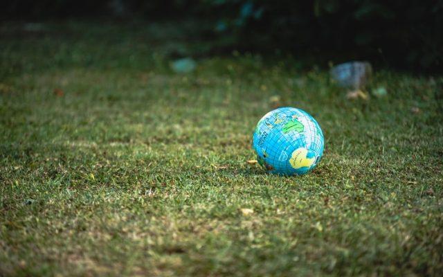Finansiści w służbie ekologii, czyli jak odpowiednie używanie pieniędzy może pomóc w walce o złagodzenie katastrofy klimatycznej